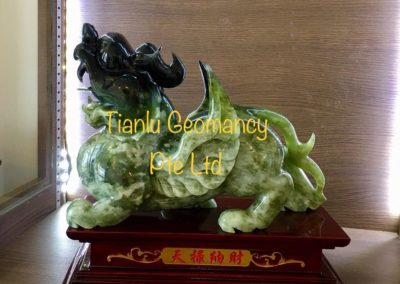 Tian Lu Customer E4