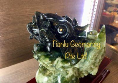 Tian Lu Customer E5