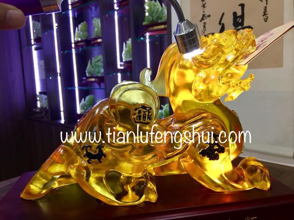Tian Lu Customer G5